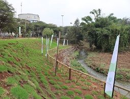 Michuki Park officially opened