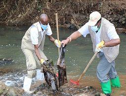 Nairobi River Cleanup